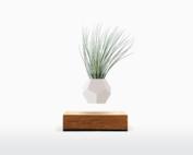 LYFE  Zwevend plantenpotje