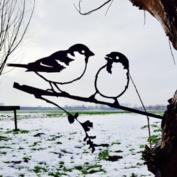 Metalbird - Mussen