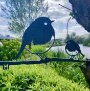 Metalbird - Roodborst duo