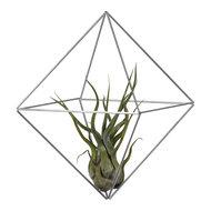 Cube-Medium